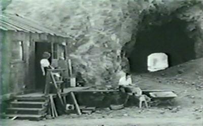 D33-cottage1b
