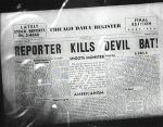 DevilBat9