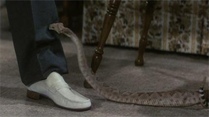 HTSOTW82-snake5b
